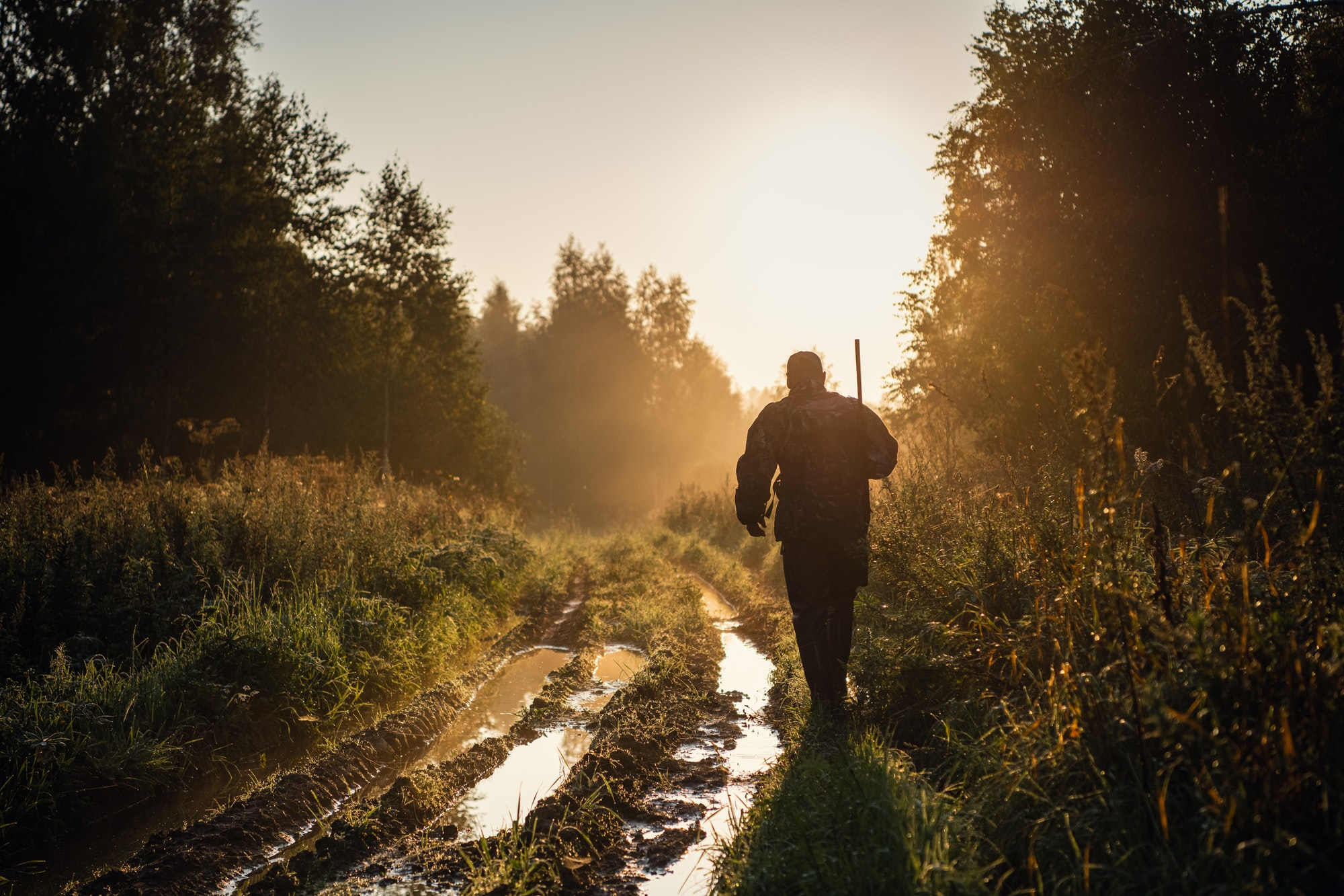 Vintage hunter walks the forest road. Rifle Hunter Silhouetted in Beautiful Sunset or Sunrise